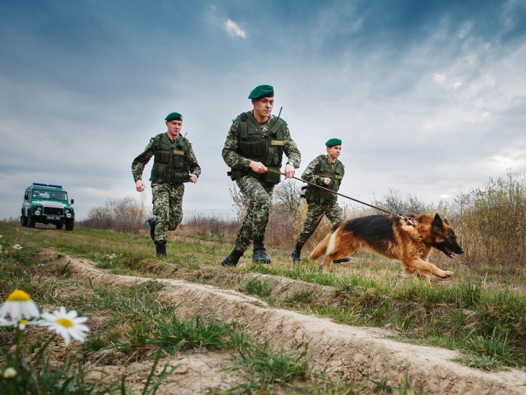 Пограничные войска картинки для детей