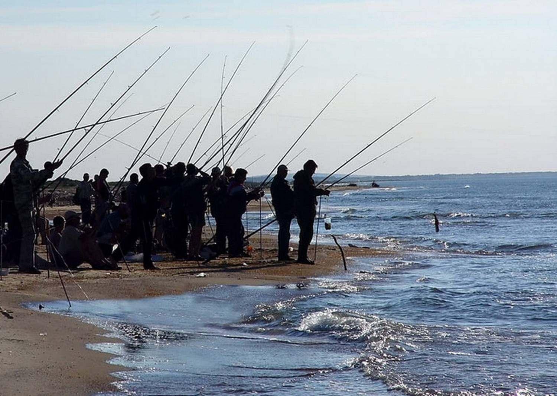 Правила ловли рыбы в черном море