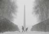 Киев туман и снег