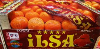 мандарины и апельсины импорт Украина