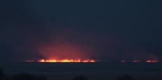 пожар в Нижнеднестровском национальном природном парке