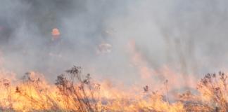 пожар сухой травы
