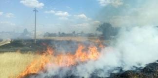 пожары на полях