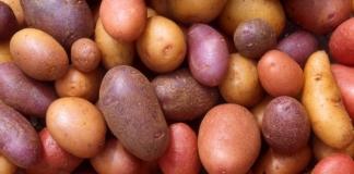 Украина картофель