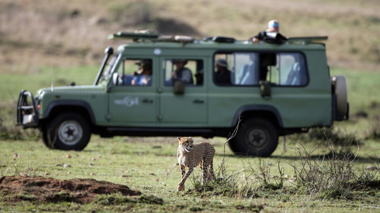 Французских туристов похитили во время сафари в Африке