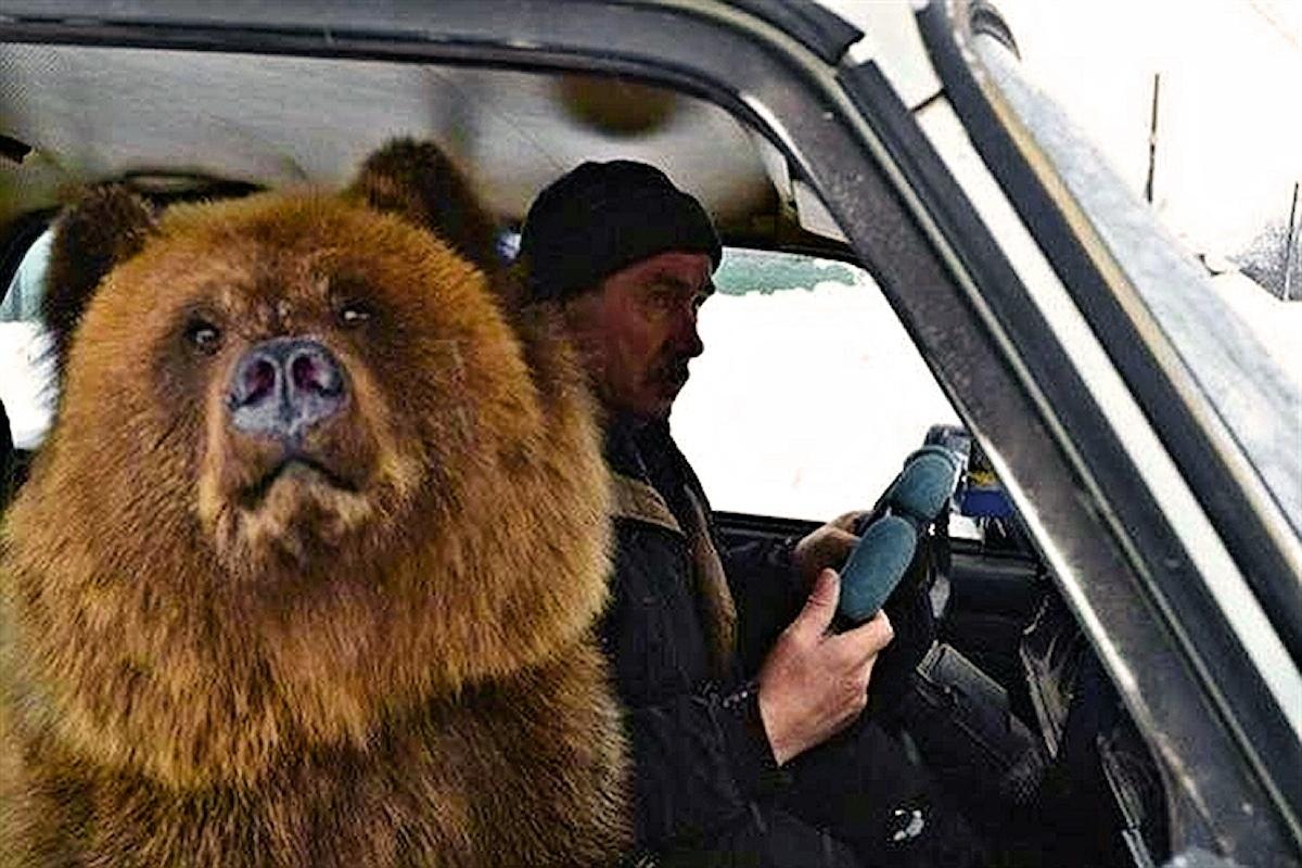 Россия картинки прикольные, прикольные