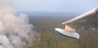 займання лісу в Сибіру