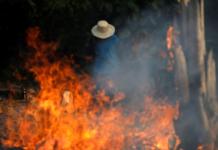 пожары в Амазонии