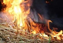 В Одесской области 5-летний мальчик сгорел в стоге сена