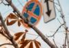 Погода 4 ноября в Киеве, а именно во второй половине дня, побила температурный рекорд.