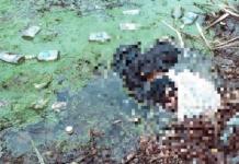 В озере на Позняках в Киеве спасатели нашли тело неизвестного