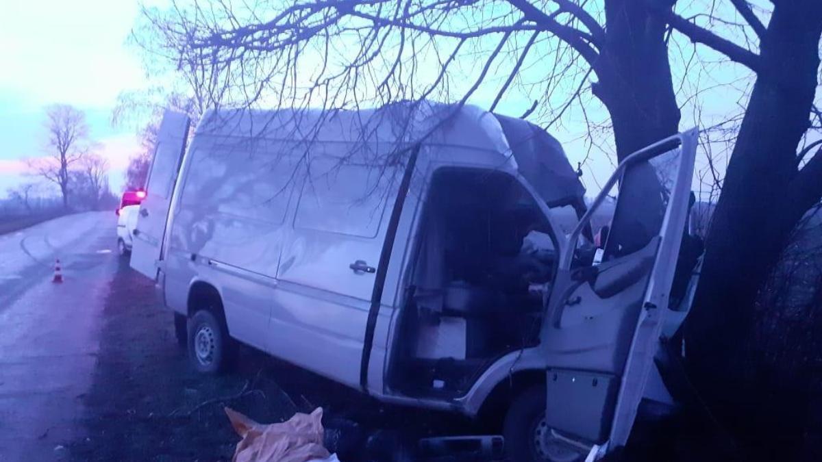 Под Киевом микроавтобус врезался в дерево