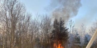 армия тушит масштабный лесной пожар