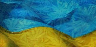 марихуана в Украине