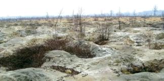 Бурштинове родовище