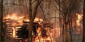 пожары возле ЧАЭС