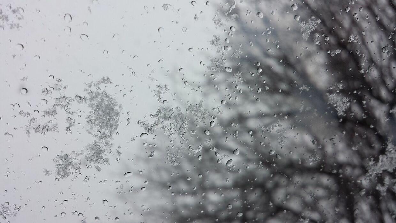 дождь с мокрым снегом