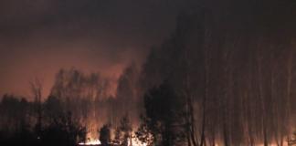 пожежа на Чернігівщині
