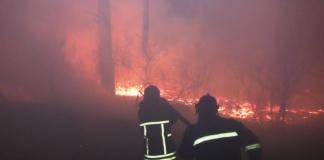 пожежа біля ЧАЕС