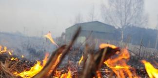 пожежі в Україні