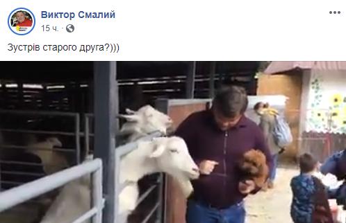 """""""А за козла Богдан ответит"""". Украинцы шутят по поводу инцидента в зоопарке"""