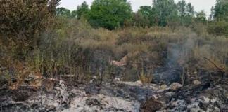 Біля окупованого Донецька виникла масштабна пожежа