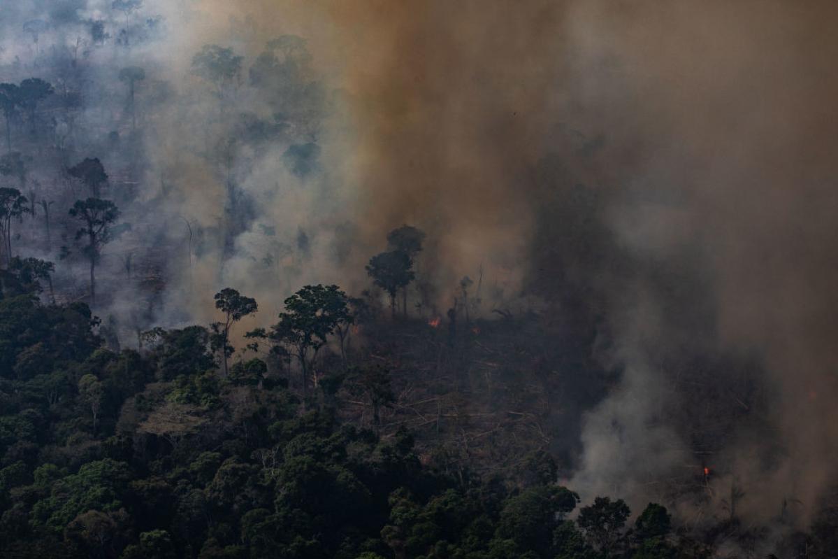 пожежі в Амазонії