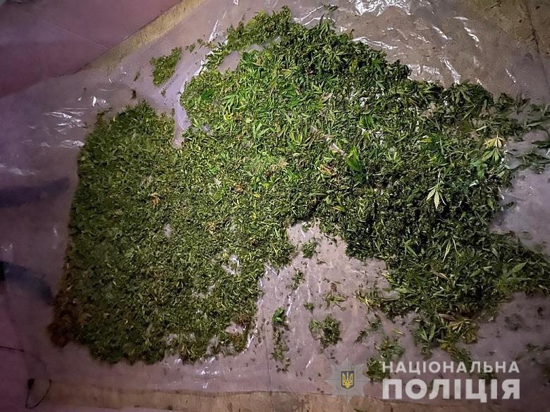 У Києві поліція вилучила у чоловіка канабісу на 5 мільйонів