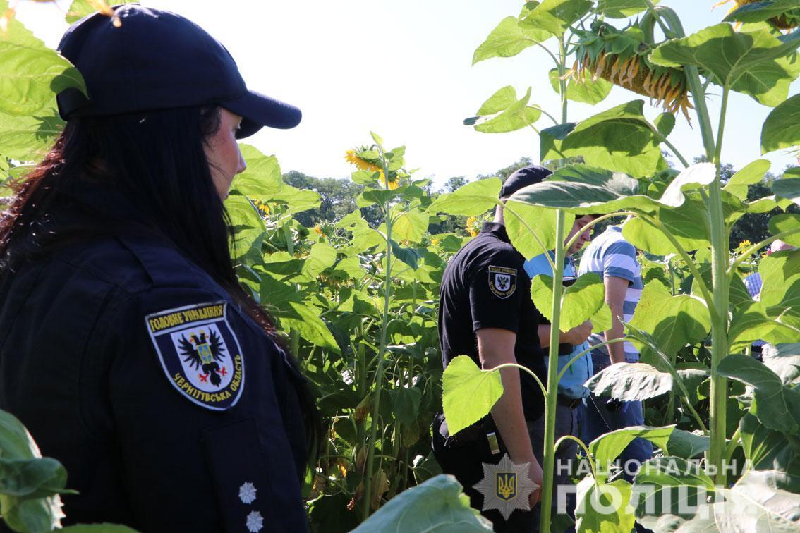 На Чернігівщині батько у полі зарізав свого 8-річного сина