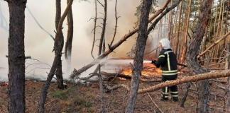 В Луганской области начался новый пожар: огонь подступает к электростанциям