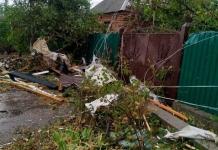 В Кропивницком ураган повредил десятки домов и повалил деревья (ФОТО)