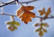 заморозки осень