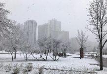 Синоптики рассказали, где в Украине в воскресенье выпадет снег