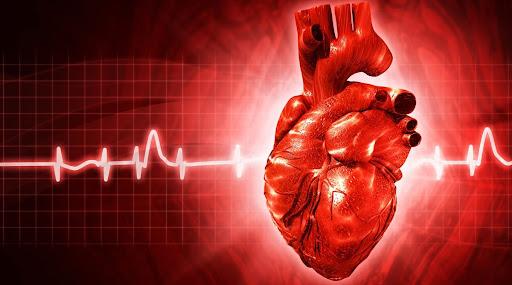 сердце серце